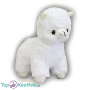 Alpaca pluche knuffel Wit 25 cm