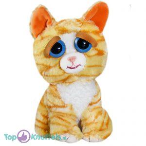 Feisty Pets Oranje Kat Pluche Knuffel 25 cm