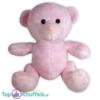 Pluche Teddybeer Knuffel Roze Knuffelbeer 25 cm
