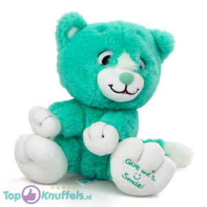 Turqoise Pluche Knuffel Kat (Give Me A Smile) 20 cm