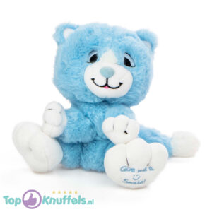 Lichtblauw Pluche Knuffel Kat (Give Me A Smile) 20 cm