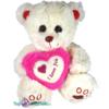 Witte Teddybeer met wit en donker roze hart ''I Love you'' 25 cm