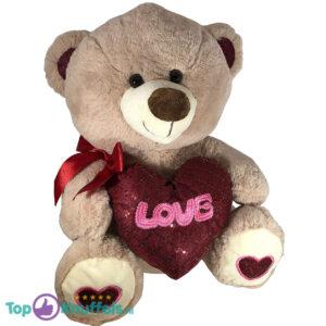 Teddybeer met hart 'Love' (Lichtgrijs) 26cm