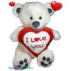 XL Teddybeer met wit