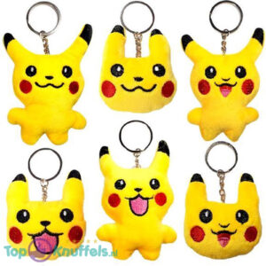 Pokémon Mini Tin + Pokemon Eevee Pluche Knuffel + Pokemon Pikachu Sleutelhanger + 3 Pokémon Stickers!